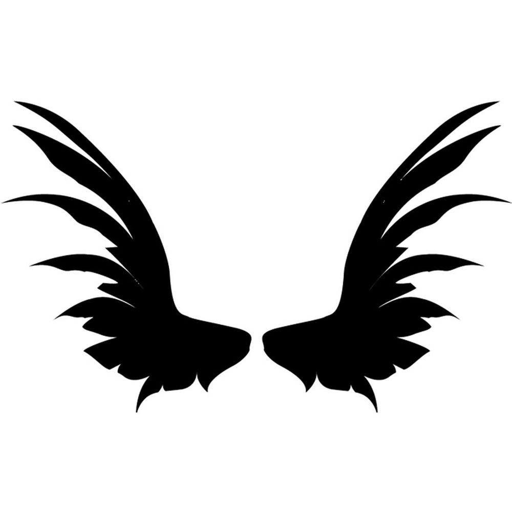Feather Angel Wings Wall Decor : Angel wings broad feathers angels and wall stickers