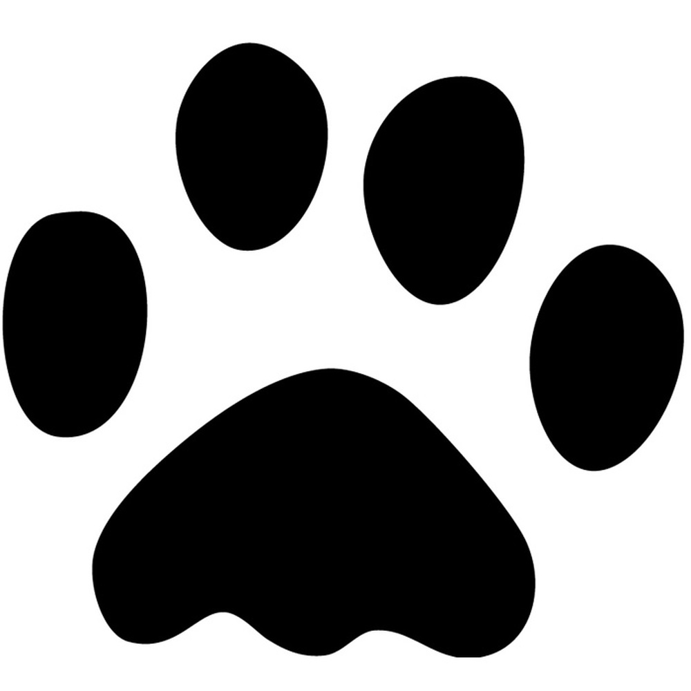 Paw Print Dog Cat Pet Wild Animals Wall Stickers Home