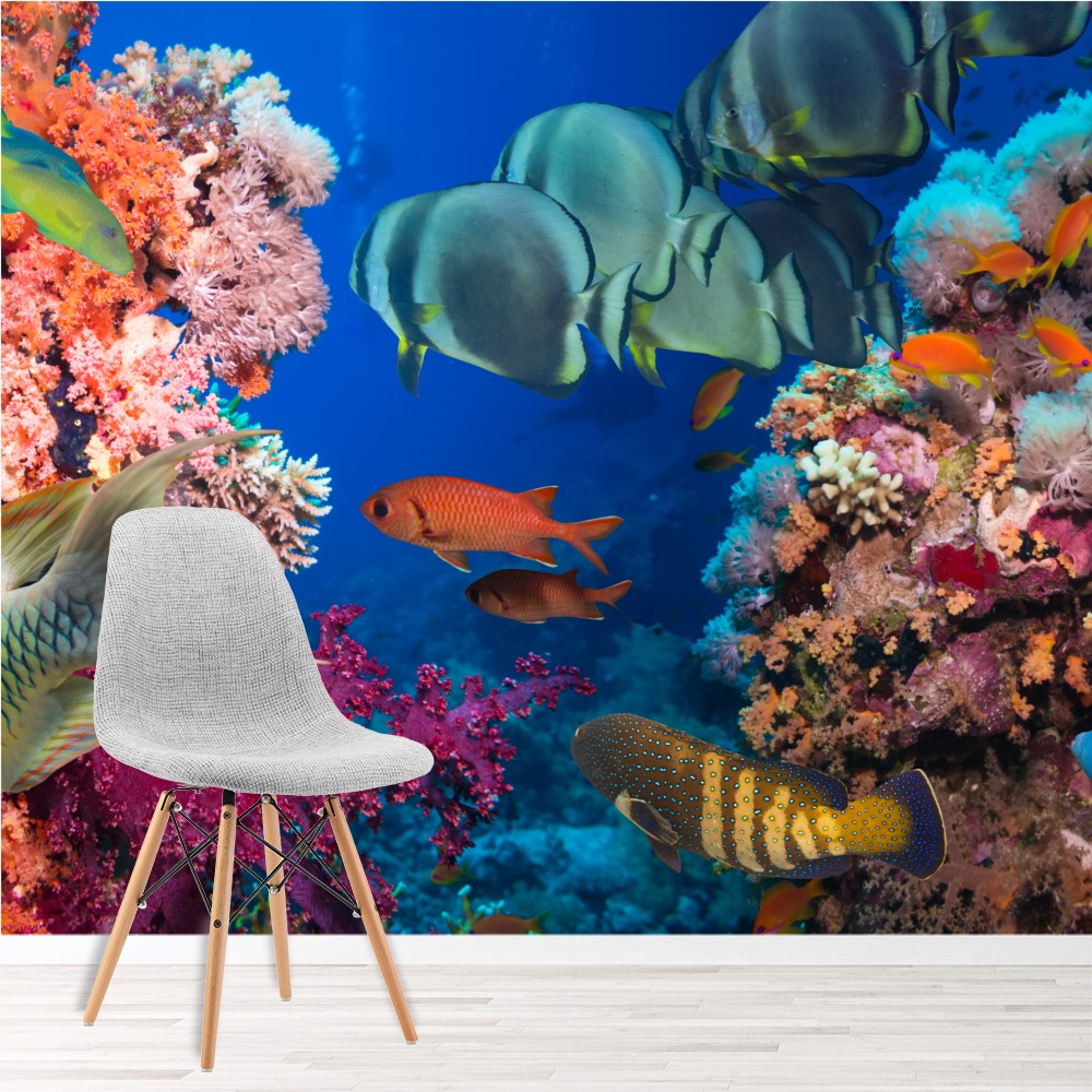Colourful Tropical Fish In Coral Reef Animal Wall Mural