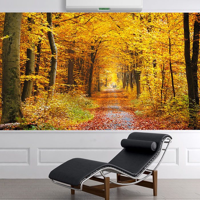 Autumn yellow trees wall mural forest path photo wallpaper for Autumn tree mural