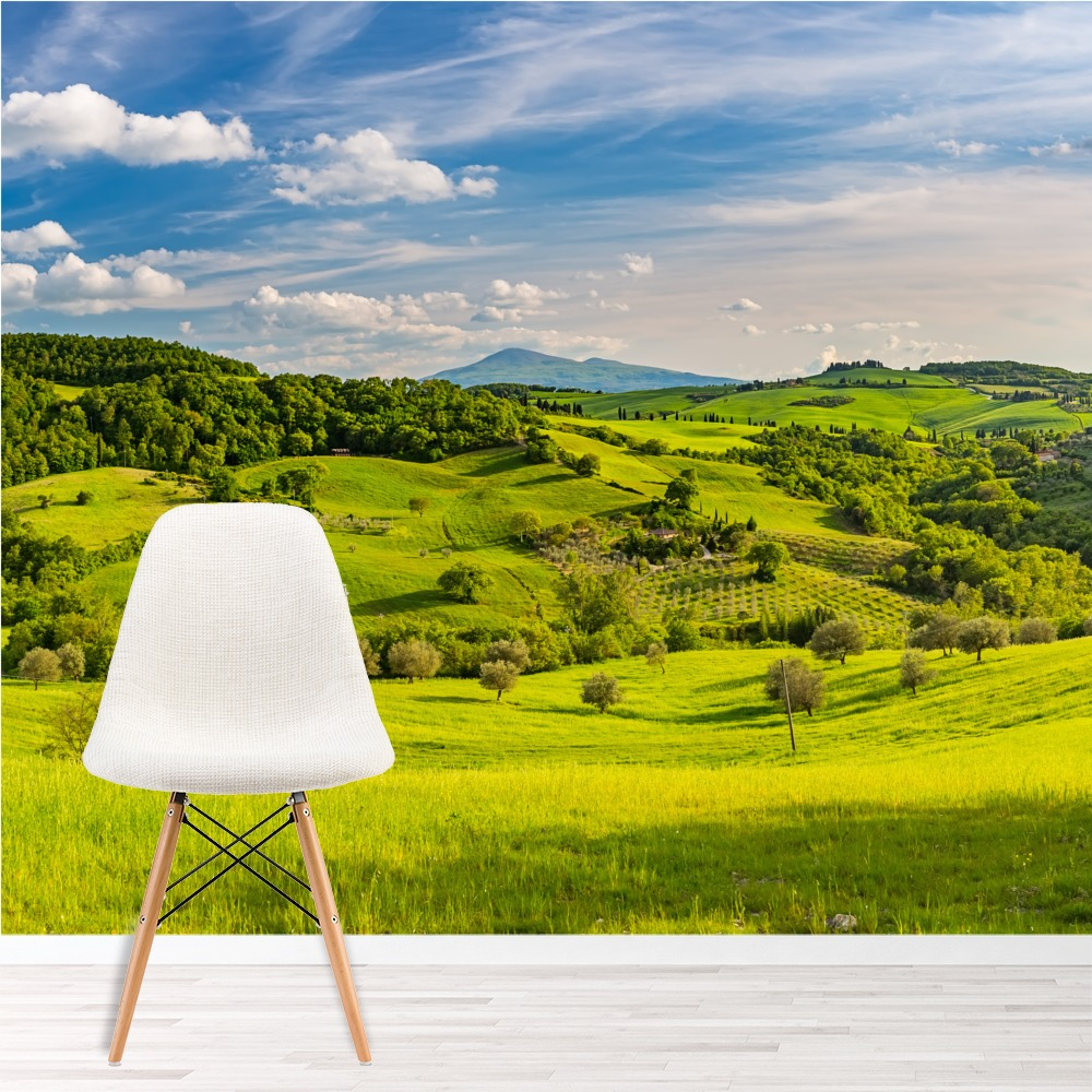Tuscan Countryside Wall Mural Green Landscape Photo