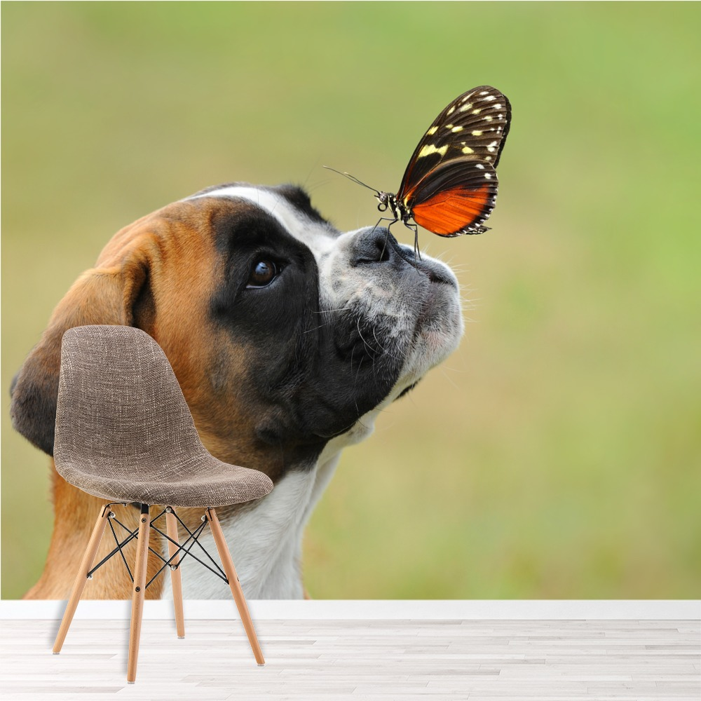Boxer Puppy Dog Wall Mural Butterfly Photo Wallpaper Kids Bedroom ...