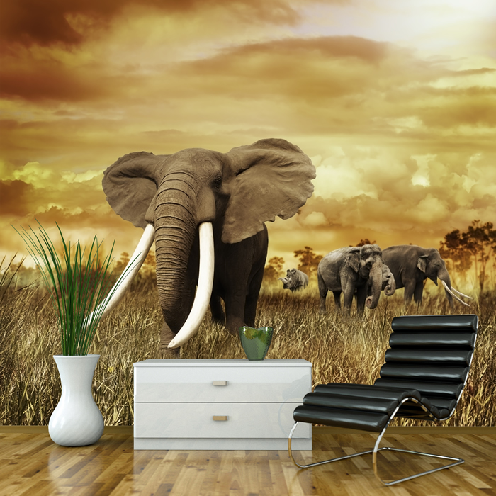 afrikanischer elefant wandbild safari tier foto tapete kinderzimmer dekor ebay. Black Bedroom Furniture Sets. Home Design Ideas