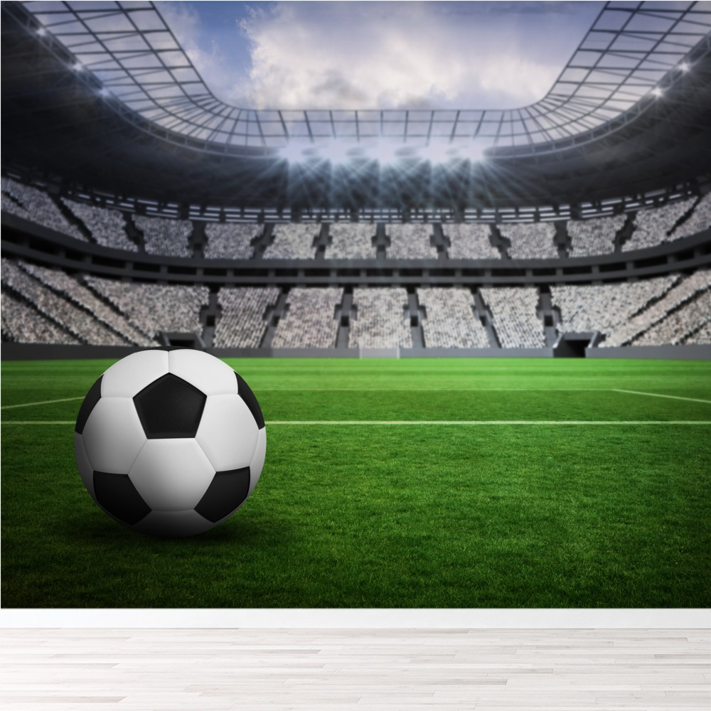 Football Pitch Wall Mural Wallpaper WS-42395
