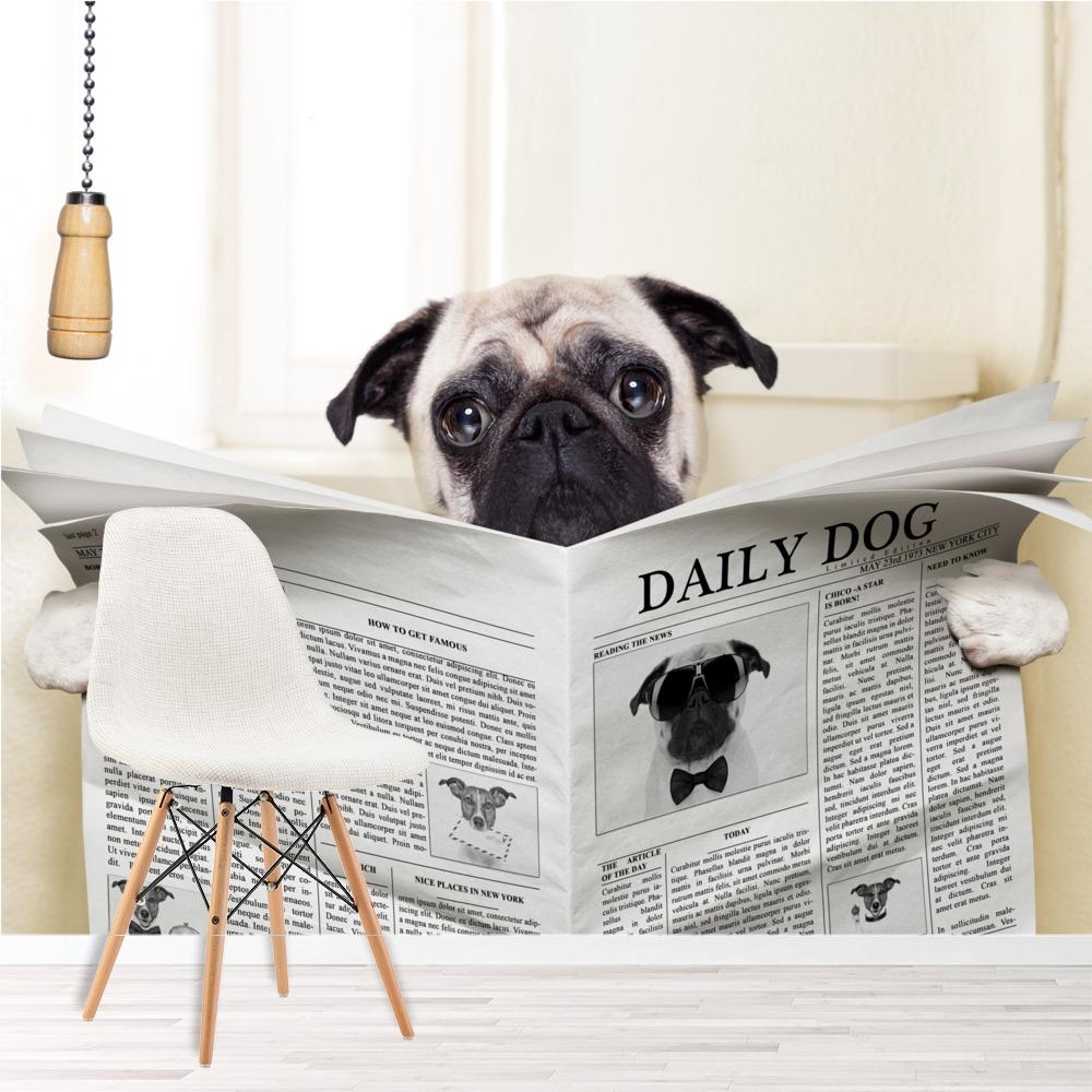 lustiges tier wandbild mops foto tapete badezimmer schlafzimmer kinder ebay. Black Bedroom Furniture Sets. Home Design Ideas