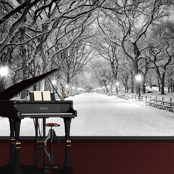 central park new york wandbild schwarz weiss foto tapete winterbaum dekor ebay. Black Bedroom Furniture Sets. Home Design Ideas