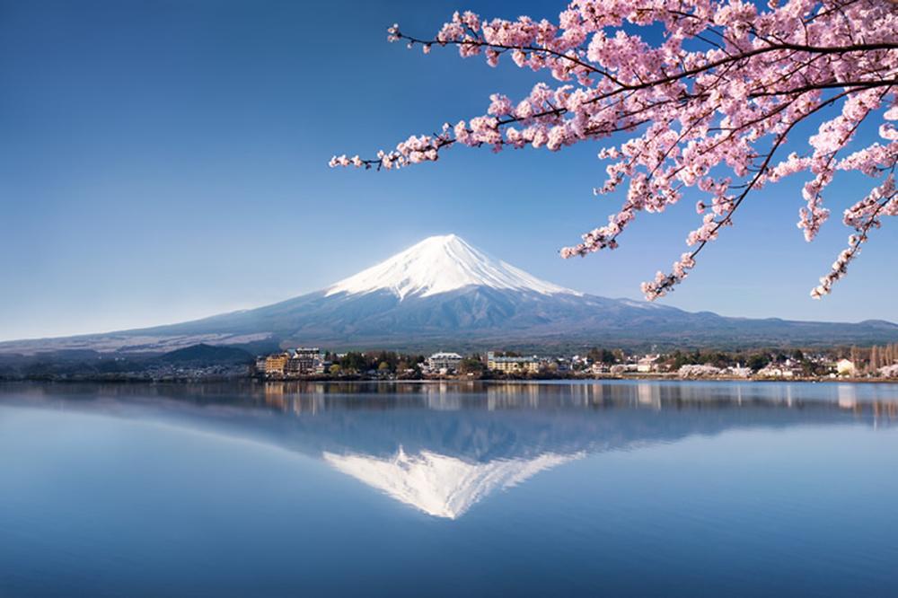 Details About Mt Fuji Japan Wall Mural Cherry Blossom Photo Wallpaper Mountain Landscape Decor