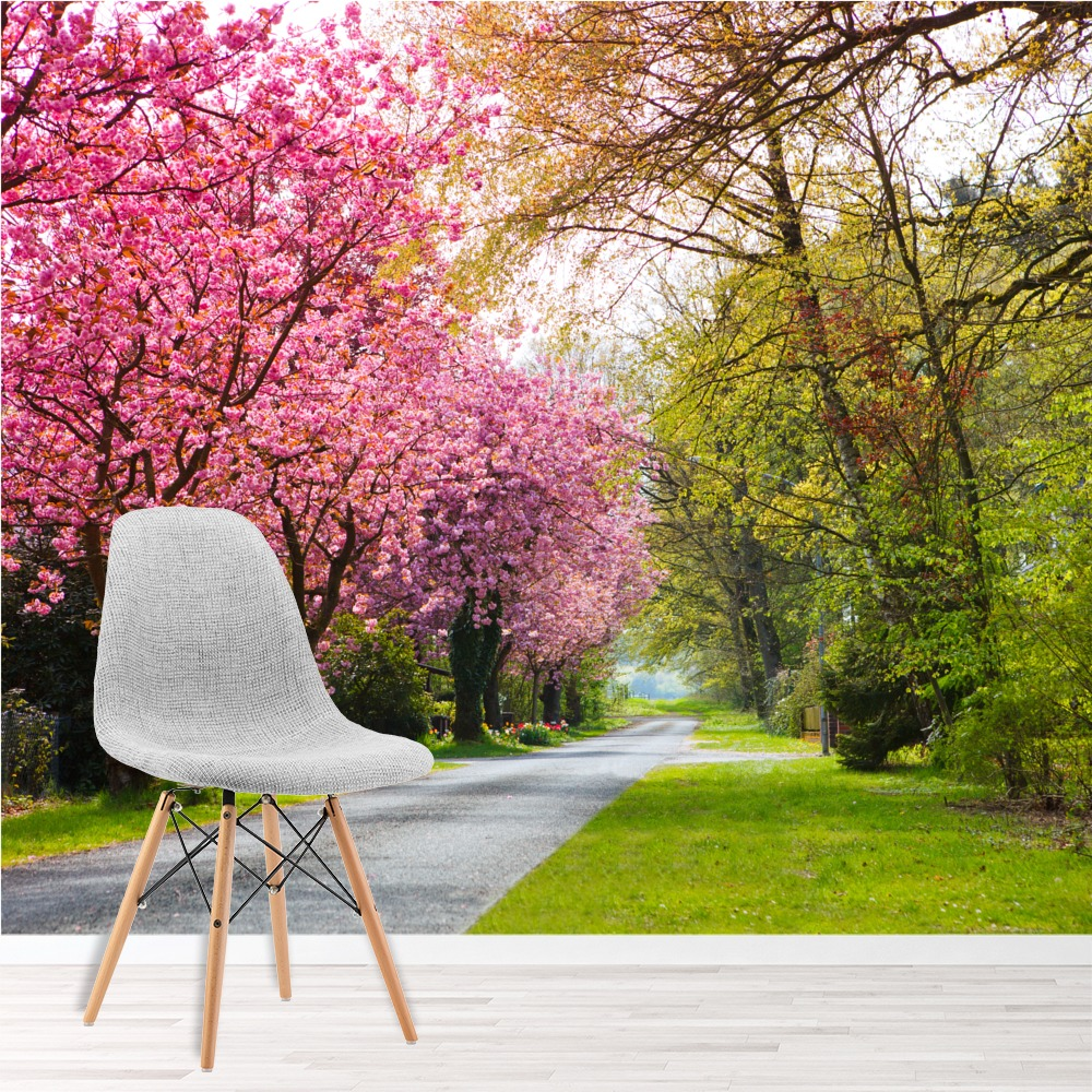 Pink Cherry Blossom Trees Wall Mural Forest Path Photo Wallpaper