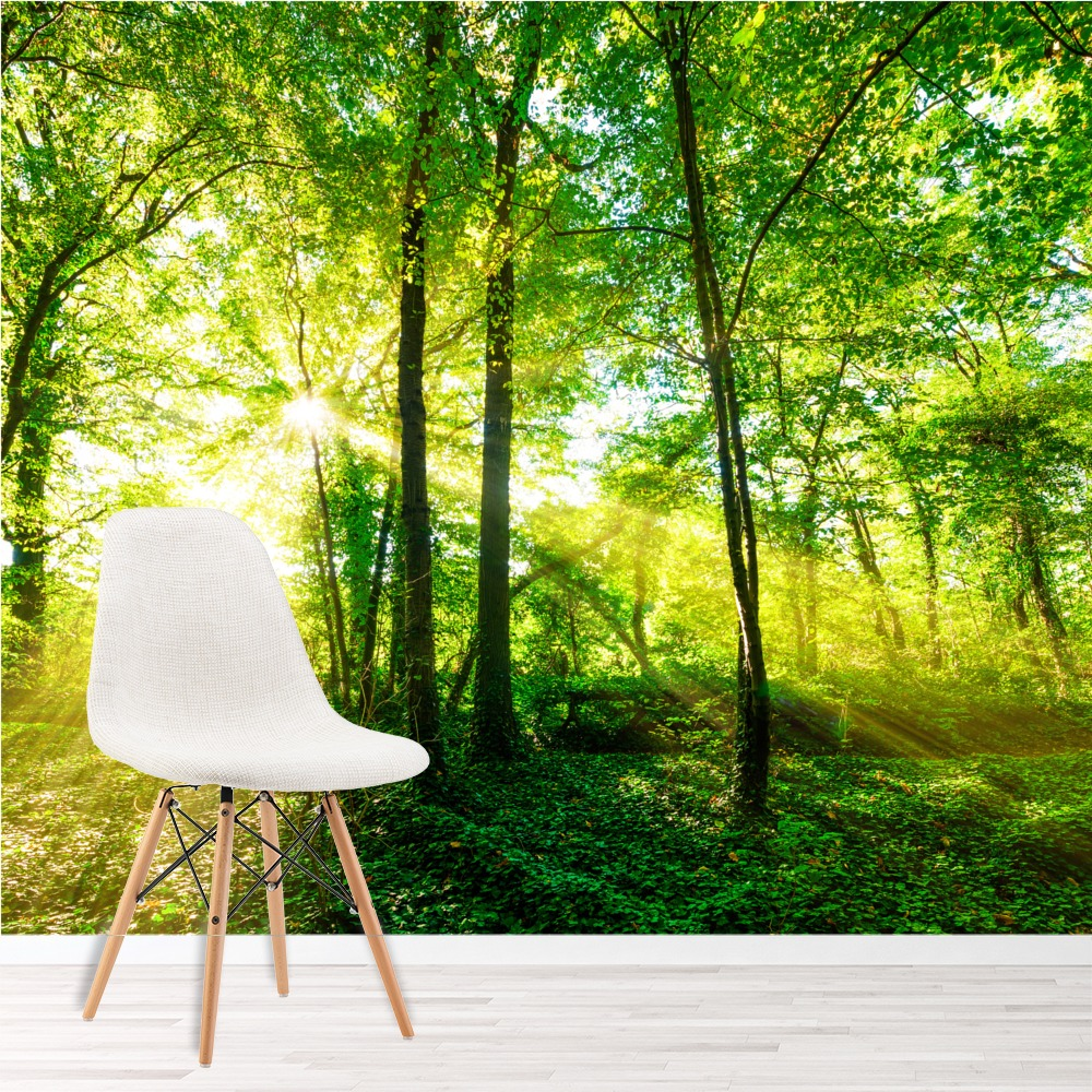 green trees wall mural forest nature photo wallpaper living room