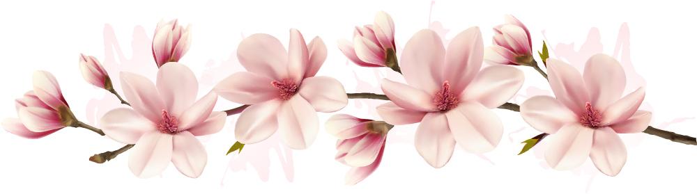 Branche de fleur rose Magnolia Floral Sticker Muraux WS-47166